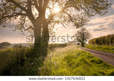 North Cotswold Lane, Gloucestershire, England. #1427636822