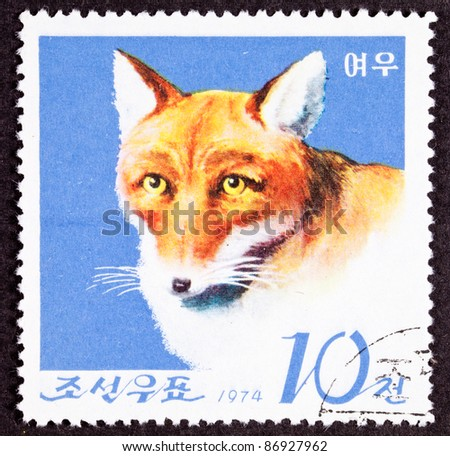 NORTH KOREA - CIRCA 1974:  A stamp printed in North Korea shows a fox looking at camera, circa 1974.