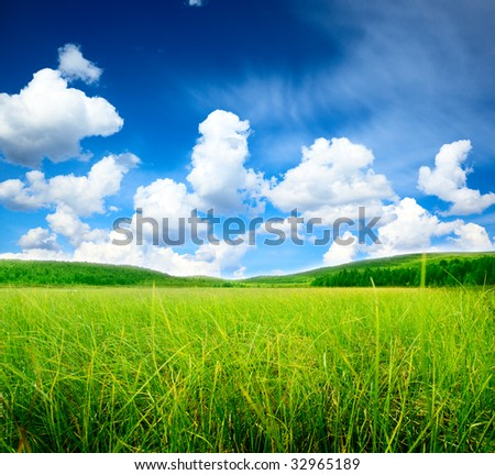 north mountains and green grass