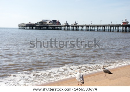 North Pier at Blackpool on a Calm Summers Day #1466533694