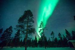 Northen Light in Lapland
