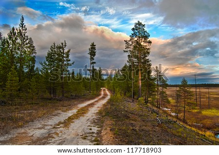 Northern boundary of the Siberian taiga and marshland. Sunset, Autumn.