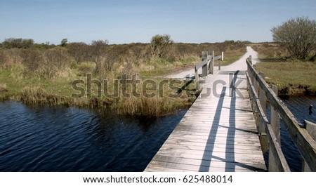Northern dutch nature on the isle of Schiermonnikoog #625488014