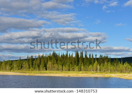 Northern landscape. Light and shade. Northern Finland