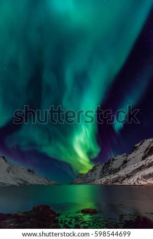 Northern lights  - aurora - in norwegian mountains in winter - Shutterstock ID 598544699