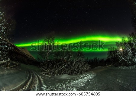 Northern Lights in Tromso. Frozen street. #605754605