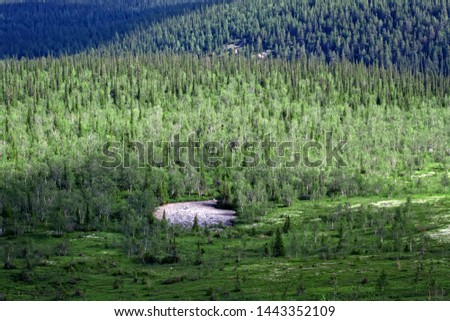 Northern Scandinavian tundra and forest tundra, boreal forest on plateaus