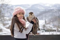 northern steppe and gray falcon  hybrid falcon falco peregrinus falconry wild bird bird beautiful bird  girl and bird  child and falcon winter
