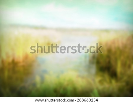 northern swamp landscape blurred out of focus image with mist and bright soft lighting vintage filter effect.