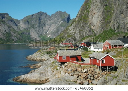 Norway fjord scenic in summer