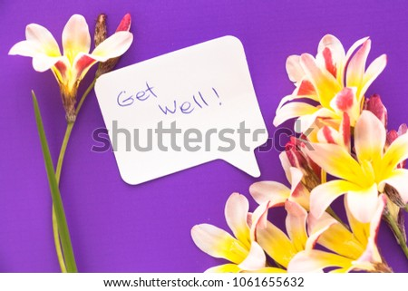 "Note in shape of heart with words ""Get Well!"" with flowers on purple surface. #1061655632"