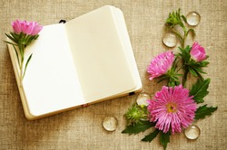Notebook and asters on canvas background