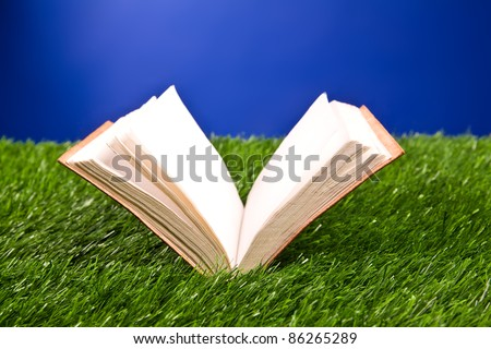 Notebook in the grass on a blue background.