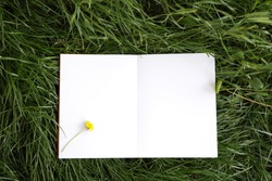 Notebook with white sheets. An open notebook with white sheets lies on the grass. Mockup Background. Open book. White notebook