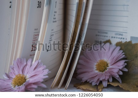 Notepad pages as pages of our lives #1226054050