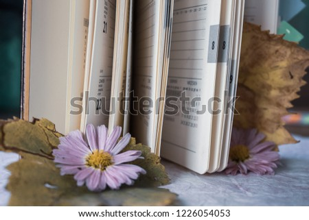 Notepad pages as pages of our lives #1226054053