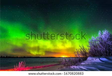 Nothern lights Aurora Borealis view. Winter snow northern lights. WInter snow Aurora Borealis in Russia