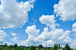 nothing but white puffy clouds and a green nature horizon