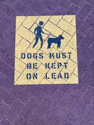 Notice Sign : Dogs must be kept on lead. Bold Black Lettering  with pictogram isolated on yellow background. Signage painted on brick walkway. Sign asking dog owners to keep dogs on a leash.