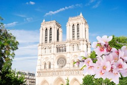 Notre Dame cathedral on Cite island, facade lclose ap at spring, Paris cityscape, France
