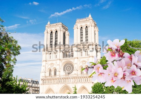 Notre Dame cathedral on Cite island, facade lclose ap at spring, Paris cityscape, France Photo stock ©