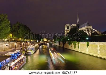 Notre Dame de Paris at night, Paris, France