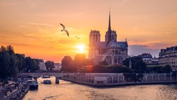 Notre Dame de Paris cathedral with seagulls flying over it, France. Notre Dame de Paris Cathedral, most beautiful Cathedral in Paris. Cathedral Notre Dame de Paris, destroyed in a fire in 2019.