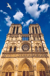 Notre Dame de Paris cathedral with seagulls flying over it, France. Notre Dame de Paris Cathedral, most beautiful Cathedral in Paris. Cathedral Notre Dame de Paris, destroyed in a fire in 2019