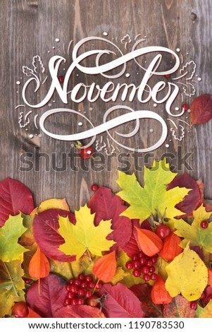 November hand lettering inscription. Bright red autumn leaves and berries frame composition on old wooden background. Great season texture with fall mood. Nature november background.