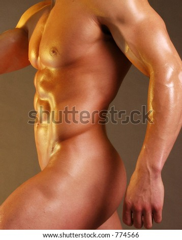 stock photo : Nude male torso. Save to a lightbox ▼. Please Login.