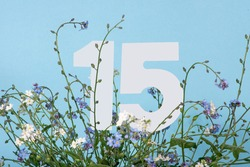 Number fifteen among blue forget-me-not flowers. Birthday, anniversary, jubilee concept. For invitation, greetings or decoration cards.