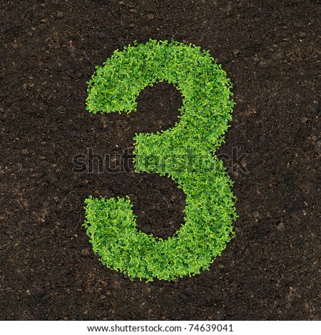 Number green of the grass on soil manure in the birds eye view