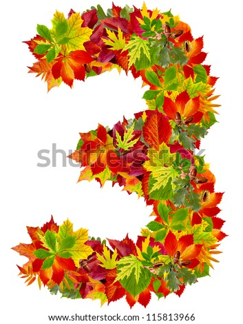 number 3 made from autumn leaves, isolated on white