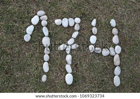 Number 174. Number one hundred and seventy four made of pebble stones on grass