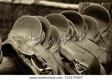 Number Of Of Saddles, Sepia