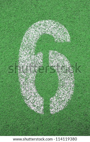 number 6 on green grass