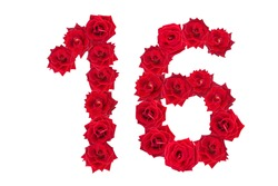 Numeral 16 made of red roses on a white isolated background. Red roses. Element for decoration. sixteen