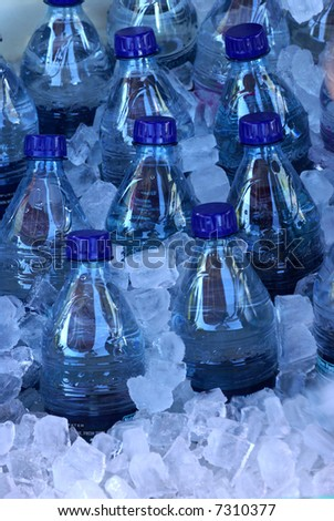 Numerous plastic water bottles in ice chest