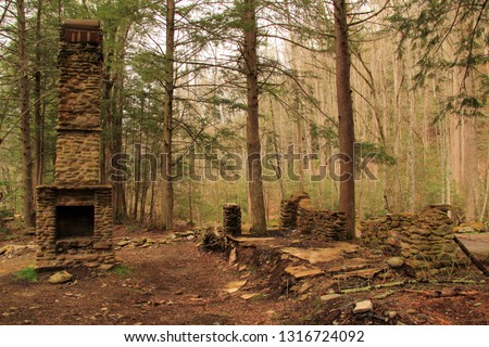 Numerous ruins, such as the ones pictured here, can be found scattered throughout the Elkmont Historic District in Great Smokey Mountains National Park, Tennessee
