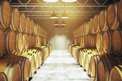 Numerous wooden barrels in winery. 3D Render