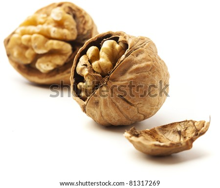 nut isolated on a white background