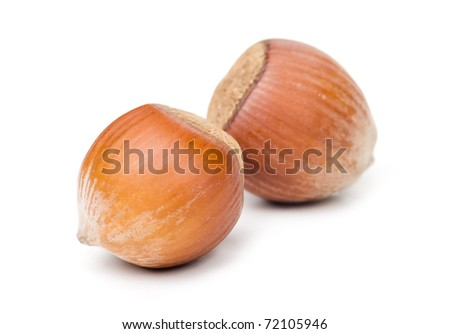Nut isolated over white background - stock photo