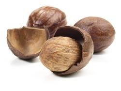 Nutmeg in Nutmeg Shell on white Background