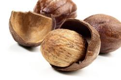 Nutmeg in Nutmeg Shell on white Background - Isolated