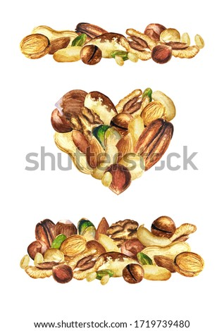 Nuts - letters made of watercolor drawn nuts. Set of illustrations of different sorts of nuts watercolor drawn. Pine nuts, pistachio, peanut, hazelnut, macadamia, pecan, cashew, Brazil nut, walnut