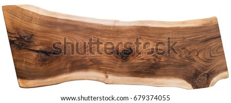 Nutwood slab isolated on a white background.