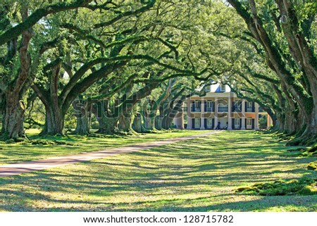 Oak Alley Plantation 8 .  Vacherie, Louisiana.
