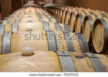 Oak barrels in which the wine matures
