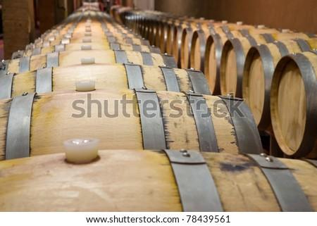 Oak barrels in which the wine matures Imagine de stoc ©
