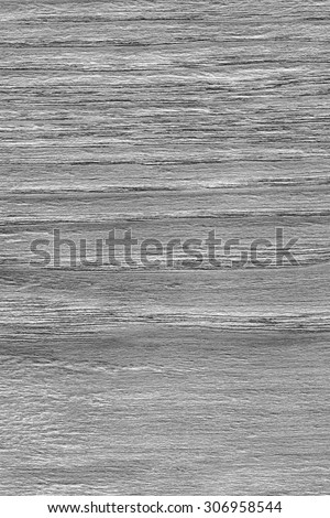Oak Wood Bleached and Stained Gray Grunge Texture Sample. #306958544